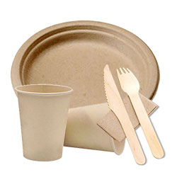 Biodegradable disposable items thumbnail