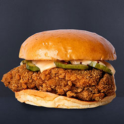 Chicken burger thumbnail