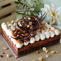 Dark chocolate and hazelnut mousse cake thumbnail