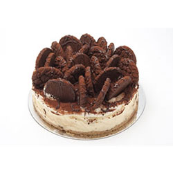 Chocolate crunch cheesecake thumbnail