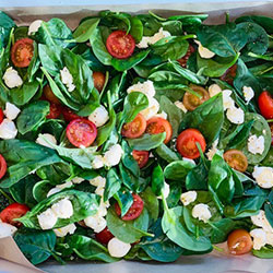 Bocconcini and tomato salad thumbnail