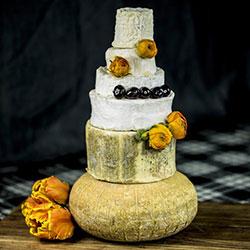 Six cheese tower - serves 150 thumbnail