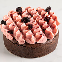 Flourless French chocolate and blackberry cake thumbnail