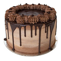 Devils food chocolate cake thumbnail