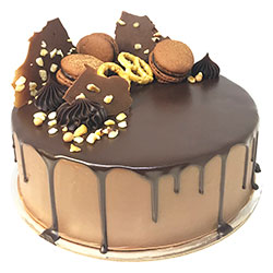 Salted hazelnut chocolate gateau thumbnail