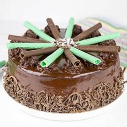 Chocolate mint ripple cake thumbnail