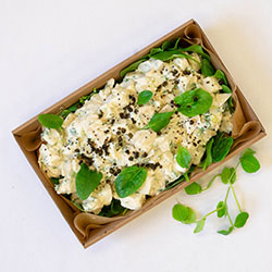 Farm fresh potato salad thumbnail