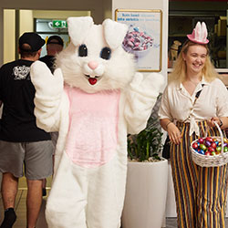 Easter bunny appearance thumbnail