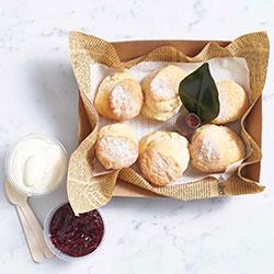 Old fashioned scone - mini thumbnail