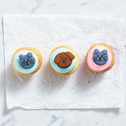 Special RSPCA cupcake thumbnail