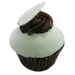 Chocolate mint leaf thumbnail
