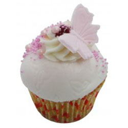 Strawberry and vanilla butterfly cake thumbnail