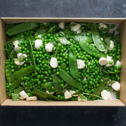 Mixed pea with mint and rocket salad thumbnail