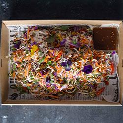 Vietnamese inspired rice noodle salad thumbnail