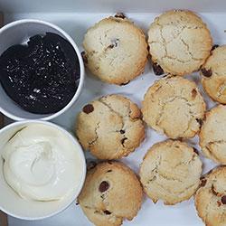 Fresh scones  thumbnail