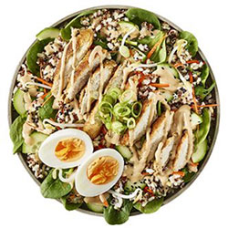 Chicken katsu salad thumbnail