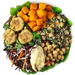 Falafel and hummus salad thumbnail