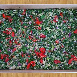Quinoa tabouli salad thumbnail