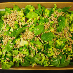 Broccoli and pearl barley salad thumbnail