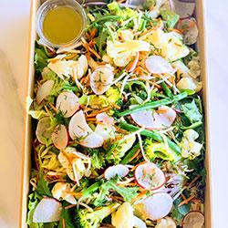 Spring garden vegetable salad thumbnail