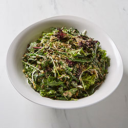 Gourmet green sprouted salad thumbnail