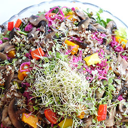 Trio quinoa salad thumbnail