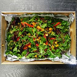 Roast vegetable salad thumbnail